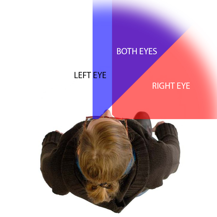 People with a right hemianopsia should read down while those with a left hemianopsia should read up In each case this will keep the next line of text within the available field of vision In each case this will keep the next line of text within the available field of vision
